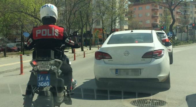 Bursa'da yunus timleri yakaladı...