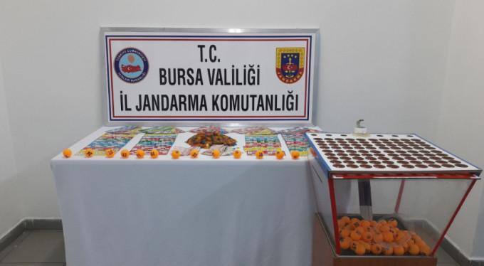 Bursa'da kumar alarmı!