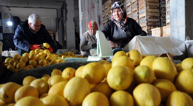 Limon değerleneceği güne kadar yatakta
