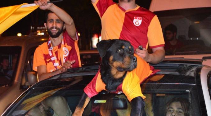 Bursa'da köpekli şampiyonluk kutlaması