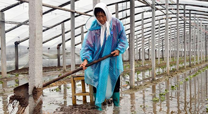 O ülkeyi tayfun vurdu! 48 ölü...