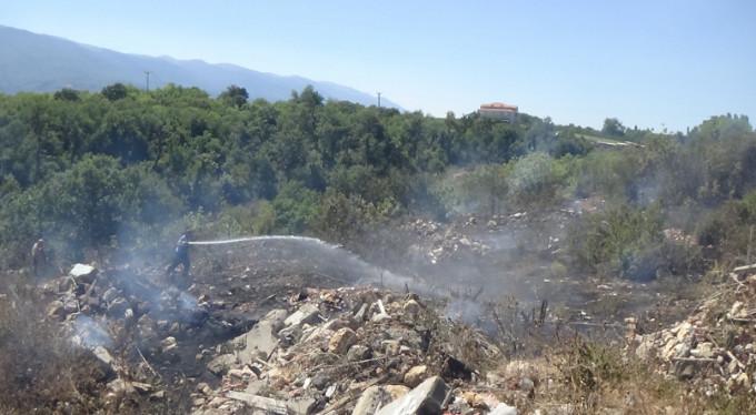 Bursa'da yine orman yangını!