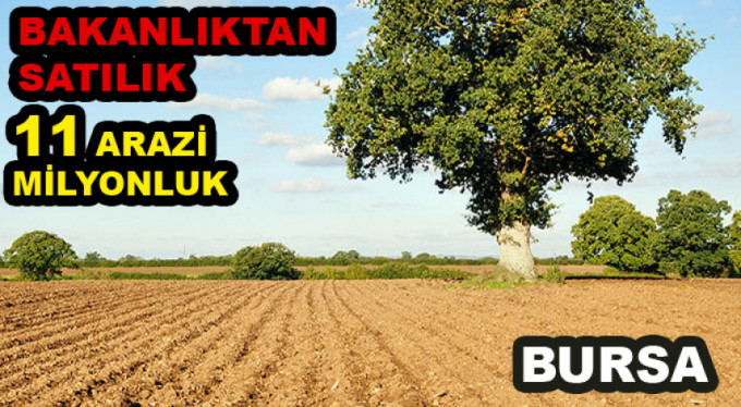 Bakanlıktan satılık 11 milyonluk arazi