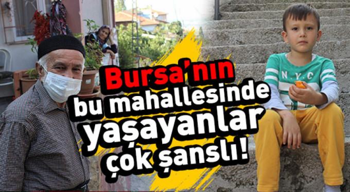 Bursa'nın en şanslı mahallesi