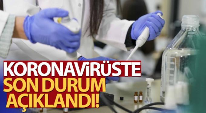 Türkiye'de son 24 saatte 7.906 koronavirüs vakası tespit edildi