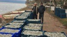 Bursa'da gölden balık taştı!