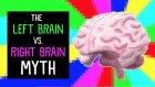 Sol beyine karşı sağ beyin efsanesi