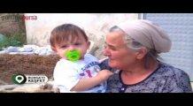 Bursa'yı Keşfet - Koyunhisar Köyü